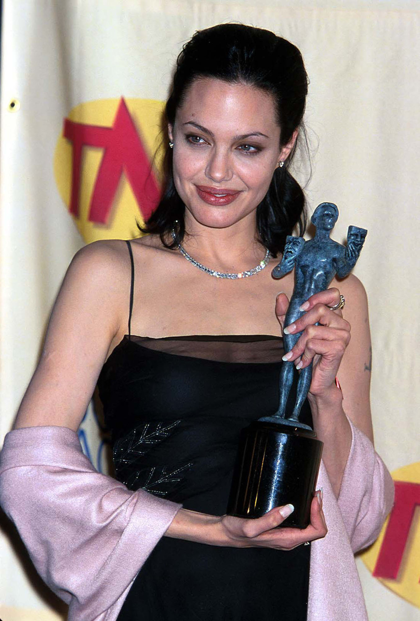 Angie S Rainbow Awards Of Angelina Jolie